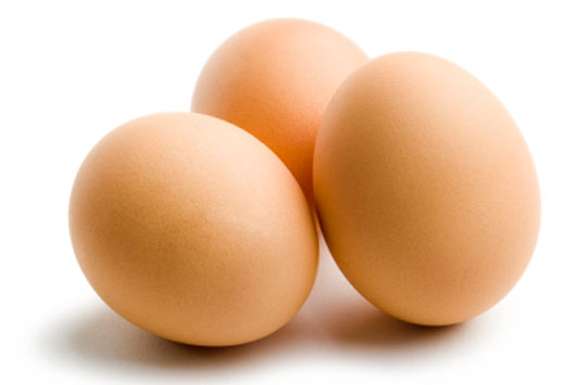 Image Result For Egg Recall